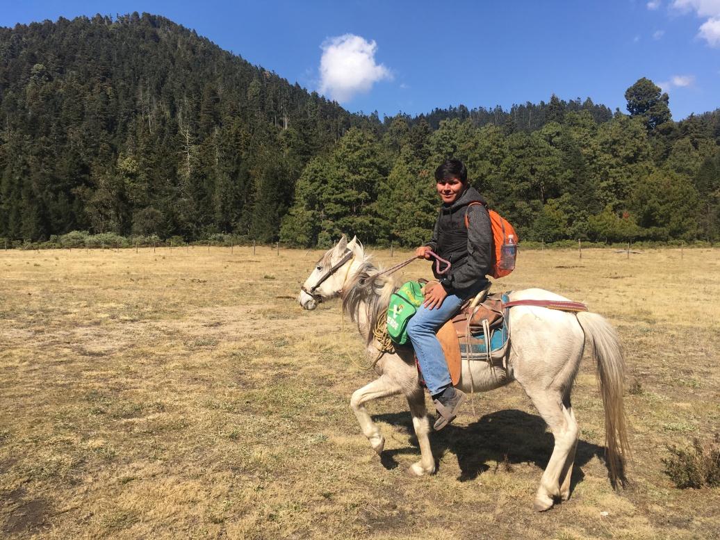 taking-solar-batteries-up-on-horse-back